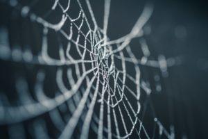 spil edderkop kabale